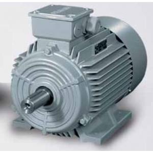 Động cơ điện SIEMENS